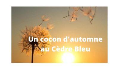 Journée spéciale Un cocon d'automne le 11.11.20